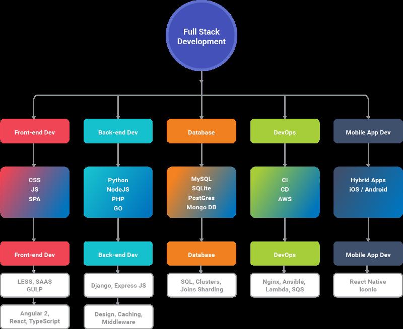 Ramas de estudio de desarrollo web